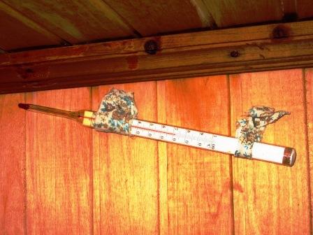 Фото. Устройство парилки. Термометр для измерения температуры под потолком в парилке