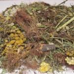 Растительные чаи